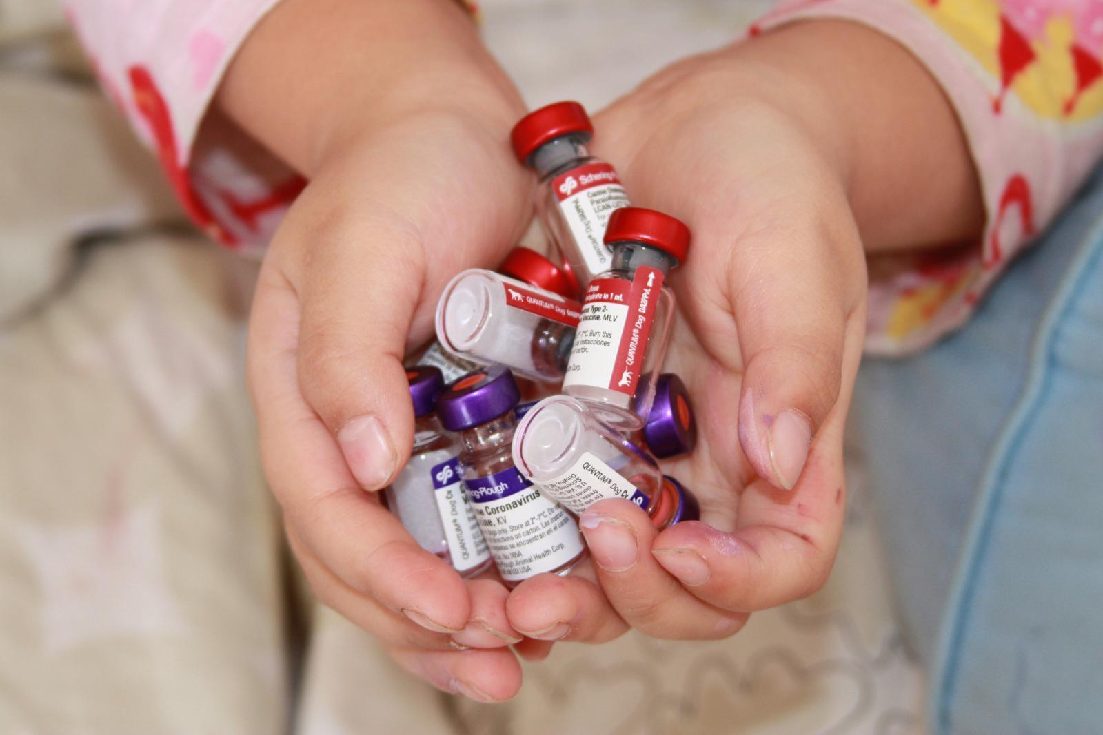 تأكد من حصول أطفالك على جميع التطعيمات الخاصة بهم
